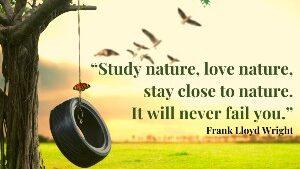 nature quotes 3
